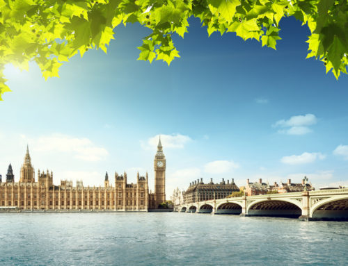 The Summer of London According to SESOME